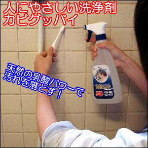 おすすめのカビとり洗浄剤.jpg